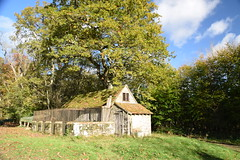 Abandoned Sty (Worthing Wanderer) Tags: nymans clouds autumn november sunny sussex westsussex park nationaltrust woodland woods forest