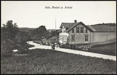 Postkort fra Agder (Avtrykket) Tags: barn bokhandler bolighus hest hus mann postkort vei vogn arendal austagder norway nor