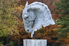 Into the Wind (2015) (Bri_J) Tags: chatsworthhousegardens bakewell derbyshire uk chatsworthhouse gardens chatsworth statelyhome autumn fall nikon d7500 intothewind statue horse head nicfiddiangreen