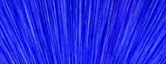 The Spray Azul (ahockley) Tags: abstract blue blur cameramotion icm light motionblur oregon oregonzoo pdx portland washingtonpark zoolights