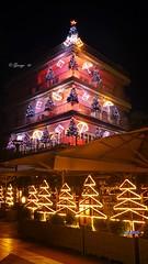 It's Christmas time...LoveBesideMe… Christmas time is coming (George @) Tags: merrychristmas christmas xmas christmastree tree christmasmood winterwonderland happyness happiness gifts christmaslights lighthouse christmastime christmasstar christmaswishes nightlife citystreet townsquare decoration brightlights happyholidays thebest timeoftheyear καλάχριστούγεννα χριστουγεννιάτικοδέντρο χρόνιαπολλά χρονιαπολλα the best time year festival celebration celebrate hohoho passion wish merry euosmos sidewalkcafe ελλάδα greece george papaki eyes photography photografer georgeeyesphotography georgeeyes georgepapaki photografia φωτογραφία visitgreece greekphotographers europeanphotography reasonstovisitgreece mysteriousgreece macedoniagreece makedonia macedoniatimeless macedonian macédoine mazedonien μακεδονια македонијамакедонскимакедонци