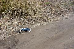 Bridgestone MB-3 (adrianonymous) Tags: bridgestone bridgestonebicycles grantpeterson brookssaddles shimano vintagemountainbike hitrite hiterite ritcheylogic steelisreal 26er onza barend maxxistires velocitywheels stansnotubes