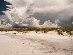 Snow Clouds Over Snow White Sands (Phil's 1stPix) Tags: dune cloud florida realflorida gulfofmexico panhandle baycounty floridapanhandle geotagged geotag natural naturalflorida wildflorida floridabeach wildfloridabeach floridaecosystem floridagulfcoast panhandlebeach creativecommonsnature dunes landscape floridastatepark clouds sand floridaoutdoor floridapark floridanature floridalandscape naturephotography duneecosystem topsailhillstatepark santarosabeach naturalbeach wildbeach dunesystem topsailhill panhandlestatepark topsldune topsl floridapanhandlebeach snowwhitesand