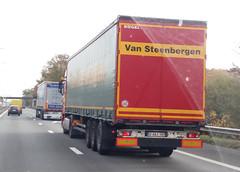 Kögel Cargo Curtainsider - Transport Van Steenbergen N.V. Arendonk, Provincie Antwerpen, Vlaanderen, België (Celik Pictures) Tags: trucks lkw vrachtwagen camion lastbilar lastwagen lorry moving movingvehicles rijdendvoertuigen belgië belgium belgique belgiën belgie belgien seeninbelgium gezieninbelgië spottedinbelgium snelweg highway autobahn freeway e313 e313snelweg spottedate313snelweg a13 kögel cargo curtainsider transportvansteenbergennv arendonk provincieantwerpen vlaanderen qaaj389