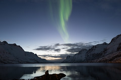 Aurora Ersfjordbotn (jarguel) Tags: aurore aurora northernlights leica leicaq norvège norway astronomie astronomy night troms tromso nuit sky ciel montagne mountain ersfjordboten paysage landscape