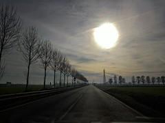 Profondità di campo (pattyconsumilano) Tags: alberi strada ontheroad prospettiva perspective spazioaperto nuvole cieloenuvole solepallido palesun