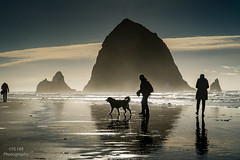 Haystack Rock,  Cannon Beach, Oregon (YL168) Tags: haystackrock cannonbeach oregon sony emount backlight silhouette