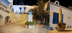 Cactus&Medina (Insher) Tags: tunisia tunis medina yasminehammamet cactus