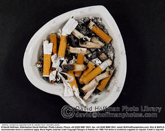 "Ashtray 1 (hoffman) Tags: abuse addiction cheap cigarette dirty disgusting drug filthy foul horizontal illegal inexpensive nasty nauseating nicotine open package packet smoker smoking tobacco 181112patchingsetforimagerights london uk davidhoffman davidhoffmanphotolibrary socialissues reportage stockphotos""stock photostock photography"" stockphotographs""documentarywwwhoffmanphotoscom copyright"
