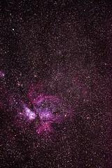 Carina Nebula - Serpentine, Western Australia (inefekt69) Tags: carina nebula etacarinae westernaustralia astrophotography astronomy stars space night nightphotography nikon 300mm d5500 dslr long exposure perth southernhemisphere cosmos cosmology serpentine dam sky ioptron skytracker