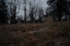 DSC_0429 (roscoe2918) Tags: cemetery headstones shrewsbury massachusetts newengland death