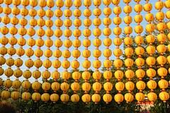 新竹/開台金山寺 (alex291556) Tags: taiwan hsinchu trip travel attraction scenery temple lantern canon eos 80d camera photography landscape image