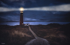 Schiermonnikoog isle lighthouse (VandenBerge Photography) Tags: schiermonnikoog islands thedutchwaddensea nature nationalgeographic netherlands thenetherlands water sea lighthouse night evening lights house path road europe canon eos80d unescoworldheritage nationalpark waddenseaworldheritage