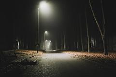 #mist #nature #light #moonlight #russia #ryzan #туман #мгла #луна #парк #природа (jose6210) Tags: мгла природа moonlight russia nature light парк луна туман mist ryzan ryazan
