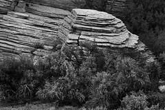 Layers (arbyreed) Tags: arbyreed stone geology layeredlimestone sedimantaryrock landscape intimatelandsacpe sage rabbitbrush grandstaircaseescalante kanecountyutah monochorome blackandwhite bw blackandwhitelandscape