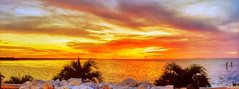 Golden Red Orange Pink Purple Tampa Bay Sunset At Apollo Beach Florida - IMRAN™ (ImranAnwar) Tags: apollobeach beachlife blessed blessings boating clouds dusk florida hdr imran imrananwar islandlife note7 palmtrees panorama photoshop reflections samsung seaside sunset tampabay wall water