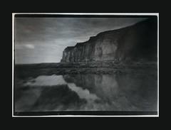 what fell? (Polar Noire) Tags: pellicule polarnoire photographieargentique agfaclack agfa moersch barytpapier filmphotography print silverprint france normandie normandy hautenormandie