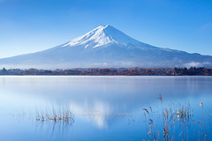 Kawaguchiko Lake in Autumn (Japan) - Mt. Fuji and reflection in the lake with blue sky. (baddoguy) Tags: asia autumn awe backgrounds beauty in nature blue clear sky color image cone copy space famous place fujikawaguchiko horizontal international landmark japan lake kawaguchi local long exposure majestic morning mountain peak mt fuji national nonurban scene outdoor pursuit outdoors photography reed grass family reflection satoyama scenery scenics snow snowcapped sunny symmetry tourism tranquil tranquility travel destinations viewpoint volcano water yamanashi prefecture