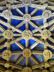 Percy Chapel Ceiling, Tynemouth Priory (Aidan McRae Thomson) Tags: tynemouth priory church chapel chantry vault vaulting medieval architecture interior tynewear ceiling bosses roofboss