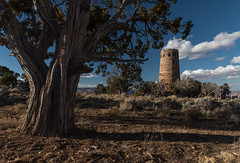 Desert View Watchtower, Grand Canyon National Park (Brandon Kopp) Tags: 2470mm arizona canyon d750 grandcanyon nationalpark nature nikon outdoor travel vacation southwest americansouthwest desertviewwatchtower trees sky cloudy clouds circularpolarizer southrim