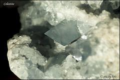 Celestite (pixbykris) Tags: celestite rock mineral blue gem gemmy gorgeous alaska anchorage crystals crystal