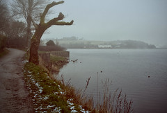 A Foggy Day at the Lake (Missy Jussy) Tags: pub man path trees grass water lancashire lake hollingworthlake fog footpath pathway winter january 2019 cold snow frost frozen birds landscape 50mm ef50mmf18ll ef50mm canon50mm fantastic50mm canon5dmarkll canon5d canoneos5dmarkii canon outdoor outside rochdale northwest england