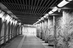 S18_1789 (Daegeon Shin) Tags: nikon d850 leica varioelmarr357035 지하도 underpass subway subterraneo bw manualfocus mf 니콘 seoul seúl corea korea 라이카 바리오엘마 흑백 수동 수동렌즈 서울