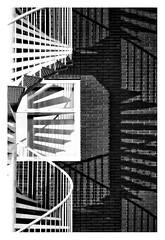 Positive negative (leo.roos) Tags: spiralstaircase stairs wenteltrap staircase stairway noiretblanc shadow schaduw reflection weerspiegeling brick wall window voigtlanderprojektos12580 projektos8025 zett150projector slideprojector projectorlens projectionlens darosa leoroos