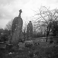 Oise, France (КлементГ) Tags: cimetiere cemetery graves tombe tombes sepulture argentique analog architecture abandoned extérieur tlr twinslensreflex yashicamat124 yashica moyenformat moyen paysage ilford old monochrome historique delta film france white 6x6 carré blackwhite black blanc noirblanc