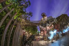 Tarzan Treehouse Disneyland (jimisPHOTOS) Tags: disney disneyland disneyworld california anaheim color wideangle longexposure