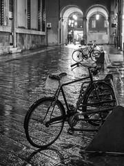 Dry ass (Riccardo Palazzani - Italy) Tags: brescia bicycle bike rain rainy pioggia lombardia bicicletta evening night sera