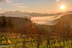 _DSC8983 (Inapapel) Tags: 2019 d7200 enkarterri europe euskalherria sunrise countryside sun flickr landscape 500