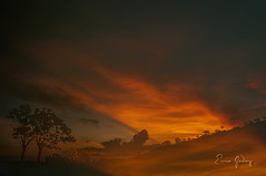 Sky on fire (Enio Godoy - www.picturecumlux.com.br) Tags: sunshine analogefexpro2doubleexposure1 niksoftware nikon nikond300s travel panoramic journey landscape capitóliomg guapémg sunset doubleexposure vacations d300s nature outside red fire