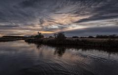 Evening light (David Feuerhelm) Tags: nikkor wideangle sunset colours peaceful landscape clouds reflections windmill norfolk norfolkbroads uk england nikon d750 1635mmf4