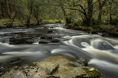 River Running Wild (Long Exposure,Monochrome,Landscape/Nature Photogra) Tags: water longexposure silkysmooth forest mountains nature landscape image photography