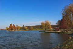 Nagykanizsa Csótó (Péter Vida) Tags: water sky landscape natural photo autumn pool scenery