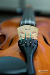 """foto adam zyworonek fotografia lubuskie iłowa-5358 • <a style=""""font-size:0.8em;"""" href=""""http://www.flickr.com/photos/146179823@N02/44487018710/"""" target=""""_blank"""">View on Flickr</a>"""