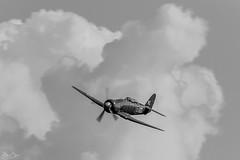 Shuttleworth Fly Navy 2018 (Dan Elms Photography) Tags: danelms danelmsphotography wwwdanelmsphotouk 5d shuttleworth theshuttleworthcollection flynavy airshow uk ukairshow2018 display plane propellor vintage vintageaviation