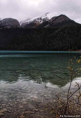 Submerged Trees and Rocks in Lake Louise, Banff National Park (PhotosToArtByMike) Tags: lakelouise emeraldlake submergedlogs rocks turquoisecoloredwater banff banffnationalpark turquoisewaters canadianrockies albertacanada mountain mountains