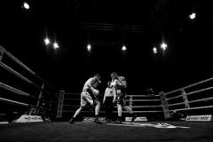 Kerman Vs Gavin (David Herranz) Tags: kermanlejarraga frankiegavin kerman boxeo boxing davidherranz