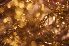 Golden lights! Explored!