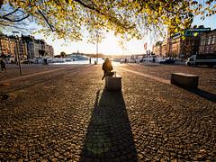 Stockholm, October 24, 2018 (Ulf Bodin) Tags: höst autumncolours sverige canonef1635mmf4lisusm shadow autumn sweden stockholm sun canoneosr nybroplan outdoor stockholmslän se streetphotography