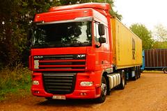 DAF XF SC E5 105.460 FT - Ex Norbert Dentressangle, Particular Beringen-Mijn, Provincie Limburg, Vlaanderen, België (Celik Pictures) Tags: daf xf sc e5 105460 ft 1jey956 exnorbertdentressangle particular namelesstrucks truckswithnocompanyname expreownedtrucks previouslyusedtrucks secondhandstrucks beringenmijn provincielimburg vlaanderen belgië msc container