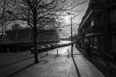 Winter sunshine and shadows: Coldstream Terrace, Cardiff (Dai Lygad) Tags: coldstreamterrace shadows cardiff wales winter sunshine photographs photos pictures images stock viewof street cars december 2018 canon 80d eos photography jeremysegrott flickr