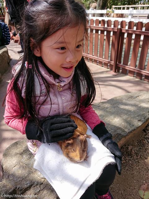 九州動物園-9501