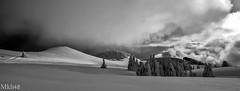 Nordic french landscape. (paul.porral) Tags: countryside paysage snow winter noiretblanc blackandwhite bnw flickr ngc france view contrast exposure natur naturephotography paisaje naturaleza white light clouds bw groupenuagesetciel