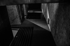 Palazzo Rhinoceros 8 (blu69) Tags: palazzo rhinoceros roma fondazione alda fendi jean nouvel