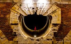 alone in the night Toulouse by night, 25 janvier 2019 (Flox Papa) Tags: toulouse by night sigma 60 600 lens canon eos 1 d mark iv 25 janvier 2019 florent péraudeau fflox papa fp alone red man who didnt success pont neuf la personne au bonnet dâne seul dansl nuit dans