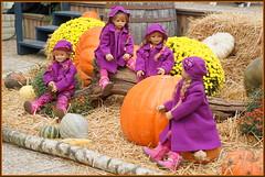 Kindergartenkinder ... einen guten Start in die neue Woche ... (Kindergartenkinder 2018) Tags: schloss arcen herbst kürbis kindergartenkinder annemoni milina sanrike tivi