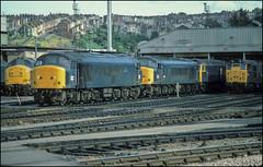 45041 Bristol Bath Road (jbg06003) Tags: class45 peak brblue bristol wr depot